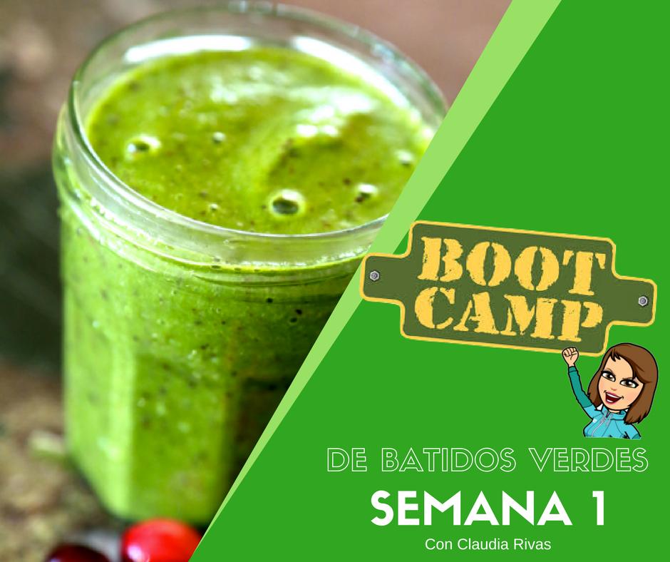 Bootcamp de Batidos W1